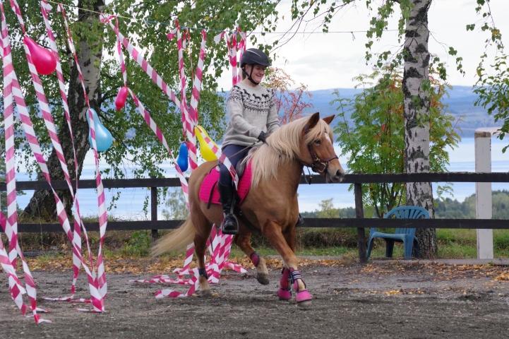 Lærling i hestefaget ved Norsk Hestesenter, Marte Justad og nordlandshest/lyngshesten Værby Stjerna deltok under den praktiske delen av samlingen. Her avbildet under StarumSkeid i høst.